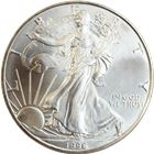 1996 American Silver Eagle (coins may have mild toning and bag marks)