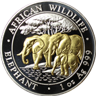2013 1 oz Silver Somalian African Elephant - Gold Gilded (.999 Pure)