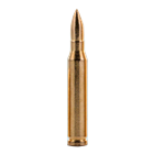 AR-15 Copper Bullet | 1 AVP OZ (.999 Pure)