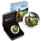 2014 Australia Silver Kangaroo Colorized 1 oz - Berlin World Fair Of Money (With Box and COA)