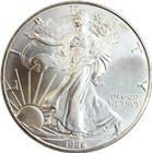 1996 American Silver Eagle (coins may have mi...