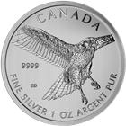 2015 1 oz Canadian Silver Red Tailed Hawk - Birds Of Prey Series