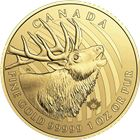 "2017 1 oz 99.999% Pure Gold ""Call of the Wild"" Elk Royal Canadian Mint"