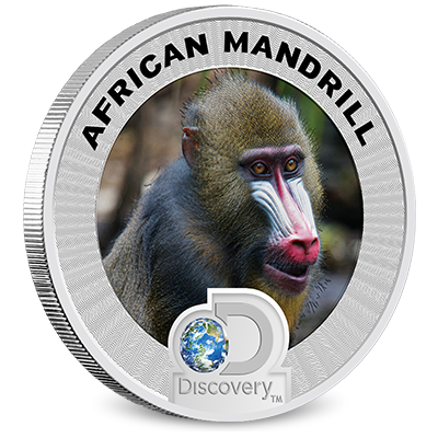 Discovery Channel Reverse Coin - Mandrill