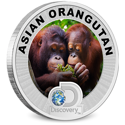 Discovery Channel Reverse Coin - Orangutan