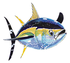 Guy Harvey Small Fish
