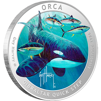 Orca Colorized