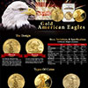 Gold Eagles Guide