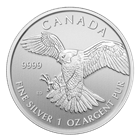 2014 Canadian Silver Peregrine Falcon 1 oz Coin - Birds Of Prey Series