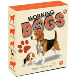 working-dogs-beagle-shipper