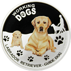 golden-lab-silver-dog-coin