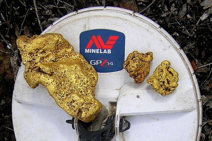 Minelab Friday Joy gold nugget Image courtesy of Minelab